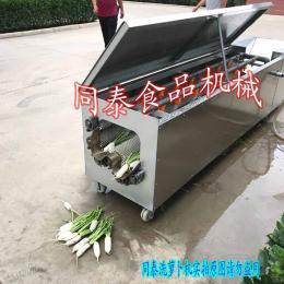 专业白萝卜清洗机   大型洗萝卜设备