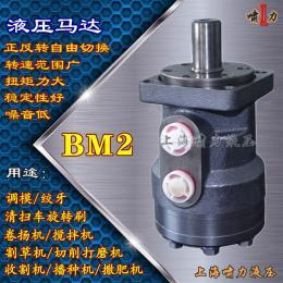 BM2-160液压马达