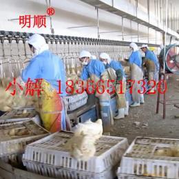 全自动杀鸡设备 蛋鸡淘汰鸡宰杀流水线 鸡鸭鹅家禽屠宰设备