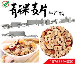 燕麦谷物生产线,水果燕麦谷物生产线
