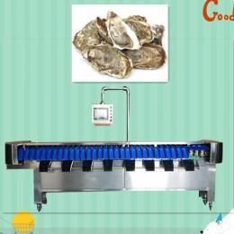 海蛎子重量分拣机  海参在线称重设备