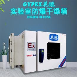 深圳 英鹏防爆烘箱 恒温干燥箱 实验室药材烤箱