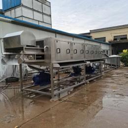 供应鼓泡洗姜机器