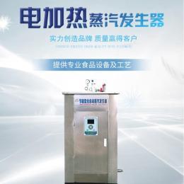 全自动小型电加热蒸汽发生器商用豆腐酿酒工业养护节能蒸汽锅炉