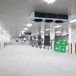 冷庫建造設計安裝 冷藏冷庫工程 醫藥冷庫建設