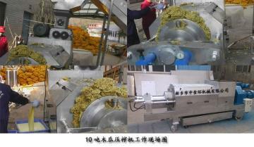 ZSHY-10木瓜压榨机(图  有原理)