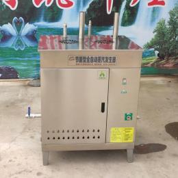 商用蒸汽发生器蒸汽机做豆腐煮豆浆酿酒蒸馒头河粉液化天然气锅炉