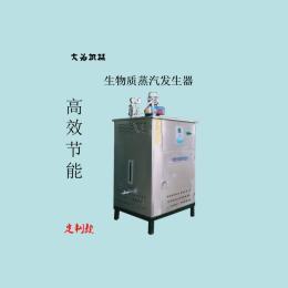 燃气承压蒸汽发生器