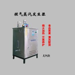 大为燃气锅炉200公斤免报检反应釜食品化工蒸汽发生器