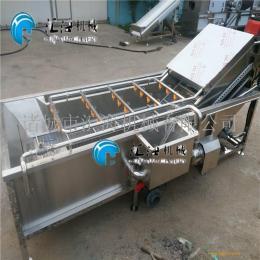 清洗机清洗风干流水线蔬菜清洗设备果蔬清洗设备多功能清洗机