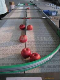 机械输送设备链板输送机