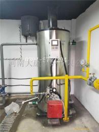 半噸立式燃氣蒸汽鍋爐LHS0.5-0.7-YQ大康鍋爐