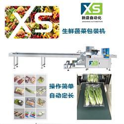 蔬菜包裝機全自動包裝機地址
